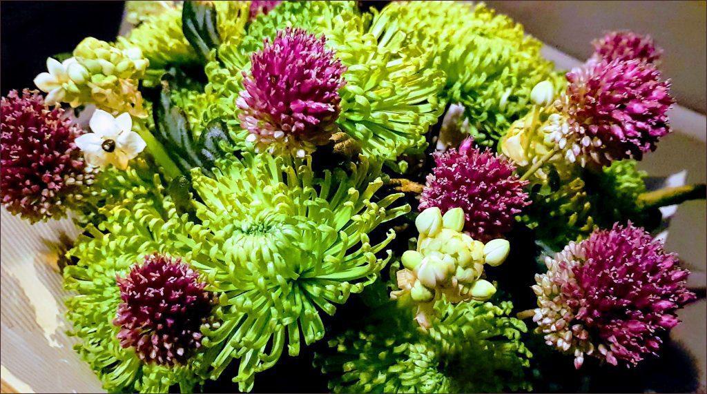 HORTUS-MAGICUS--Puokščių-pristatymas.-Žalios-chrizantemos.Flower-delivery