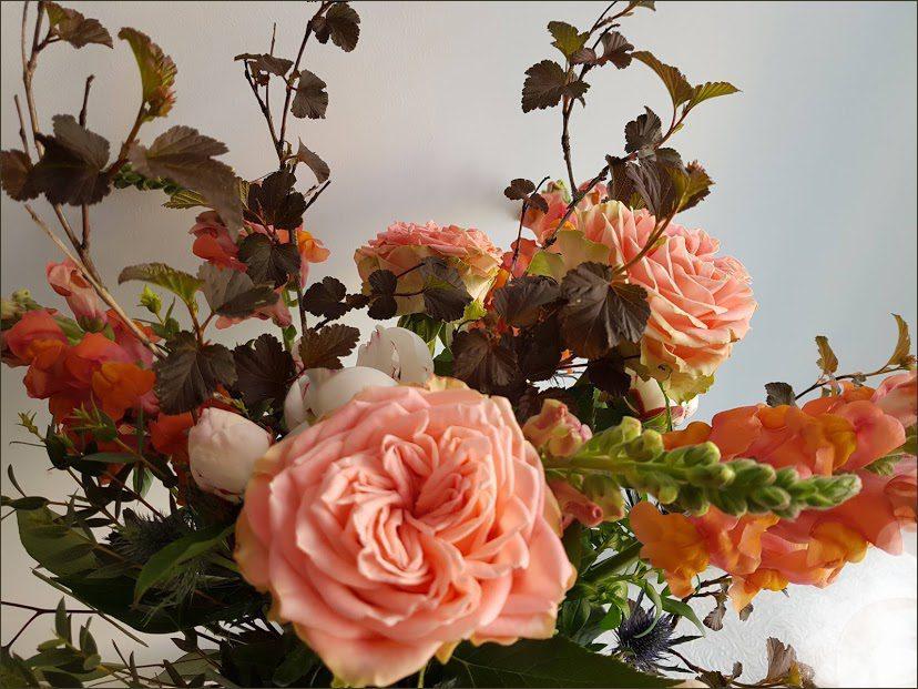 HORTUS-MAGICUS--puokste-su-sodo-rožėmis