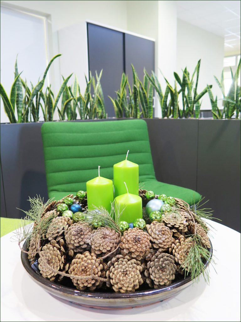 HORTUS-MAGICUS-kaledine-kompozicija-biure.-Christmas-decoration-with-cones